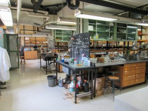 View of the main lab room